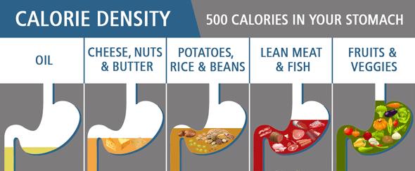 Lien entre volume et calories des aliments consommés